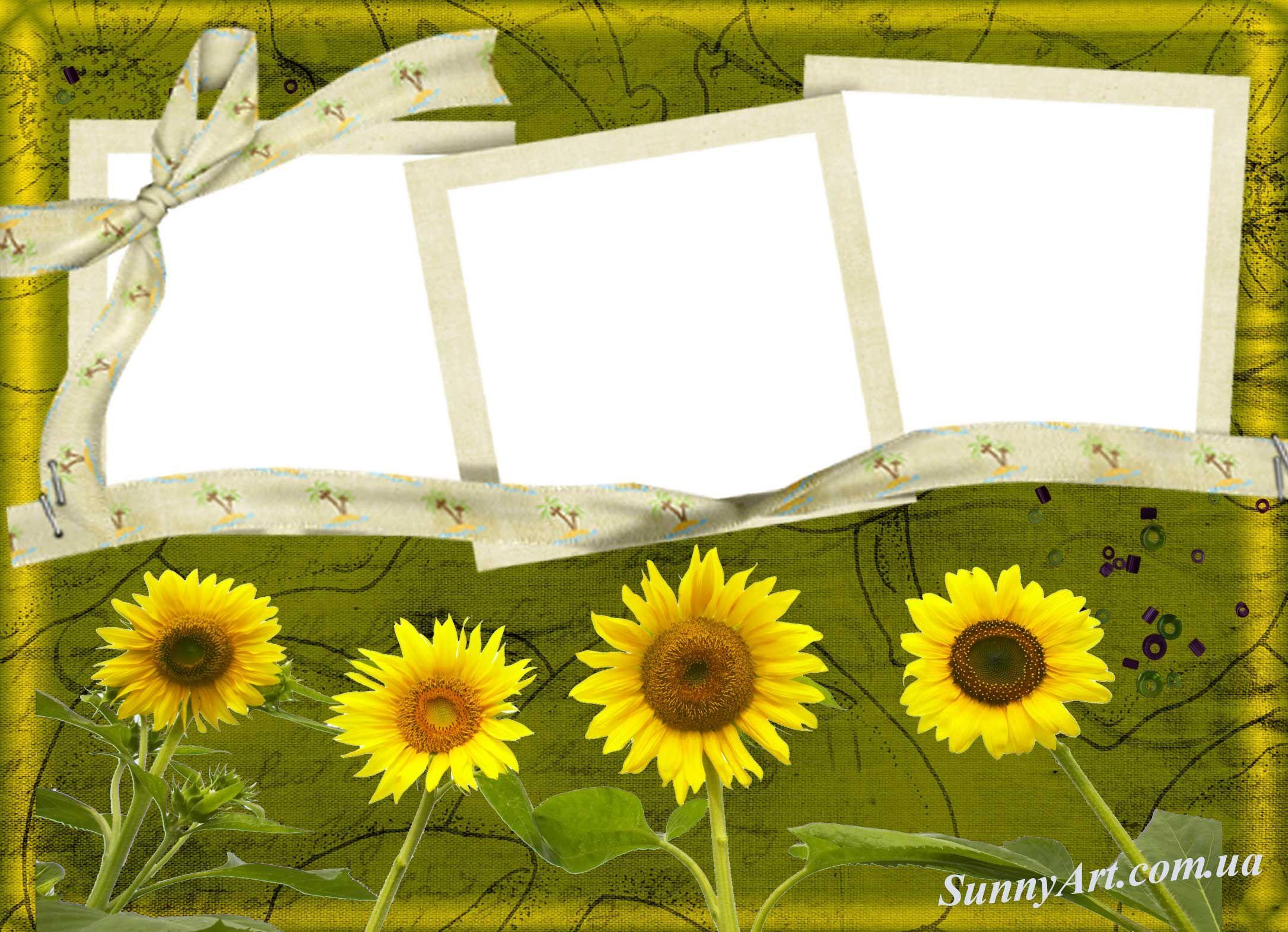 Рамка для фото с подсолнухами — Рамки для фотошопа | Рамки ...