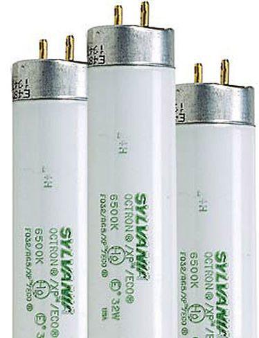 T8 Fluorescent Grow Light Bulbs Gardeners Com Grow Light Bulbs Grow Lights Bulb