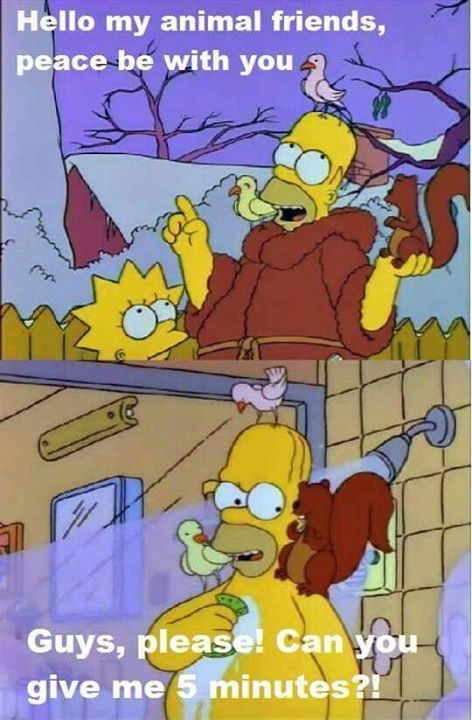 Do You Have Animal Friends Like Homer Simpsons Funny Simpsons Cartoon Cartoon Tv Shows