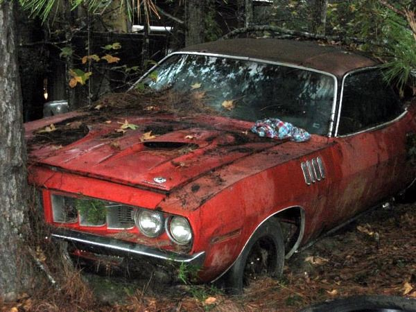 'Cuda lost in the woods...a cryin' shame.