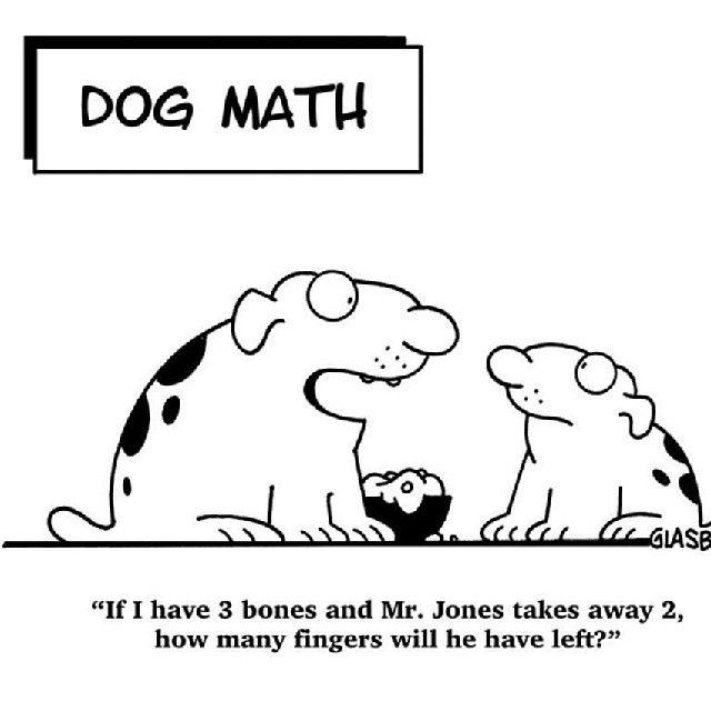 Funny Meme For Math : Math humor cat mathpics mathjoke mathmeme pic joke