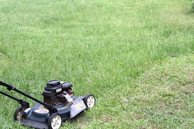 6th Circuit: City can charge homeowner for mowing the grass | Michigan Radio | #property #homeowners #laws #localgov #michigan #howell