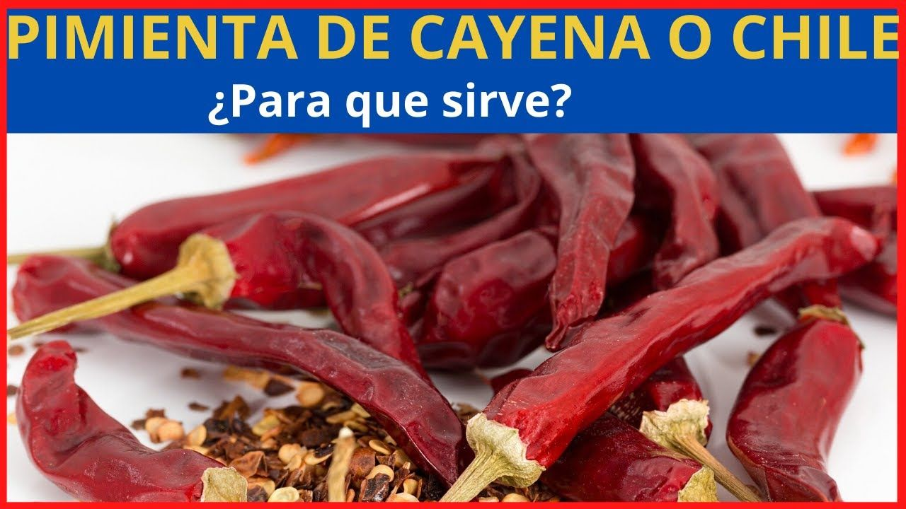 Pimienta De Cayena Para Que Sirve La Pimienta De Cayena En La Salud Pimientadecayena Ajies Plantas Remedios Alimentos Saludables Alimentos Pimienta Cayena