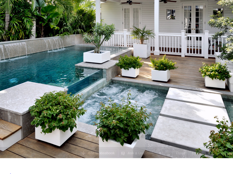 Just a hint of white a dash of wood and some nifty little bonsai's and you have yourself a modern retreat for any time of the day n your very own backyard!  Visit our store Real Palm Trees  www.realpalmtrees.com