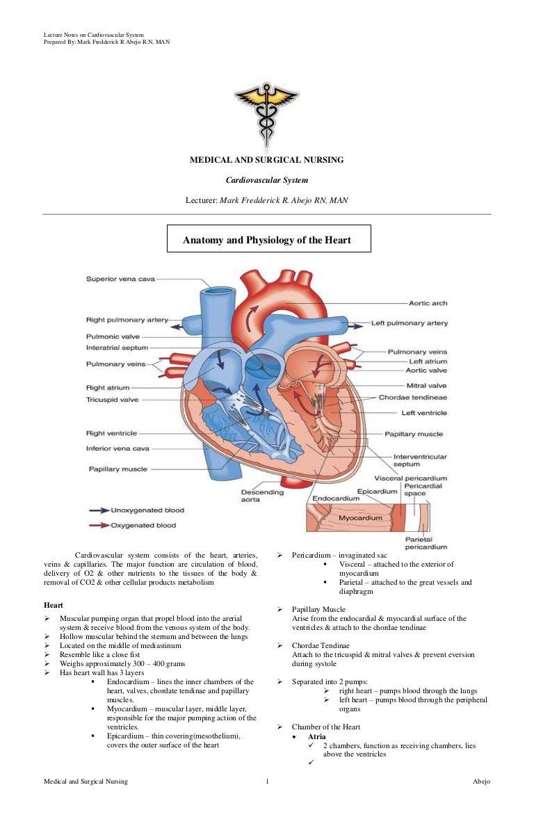 Cardiovascular Nursing By Mark Fredderick Abejo Via Slideshare