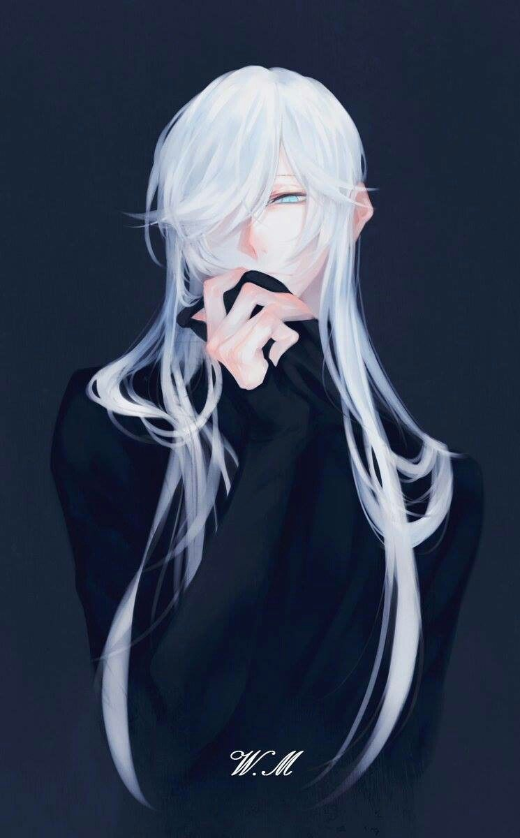 7 Anime Aesthetic Male Long Hair Aesthetic Anime Hair Long Male Aesthetic Anime Hair Hairaesth In 2020 White Hair Anime Guy Anime Long Hair Anime Guy Long Hair