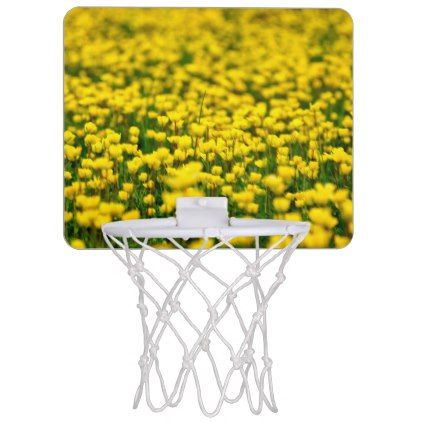Small yellow wild flowers in the green field mini basketball hoop small yellow wild flowers in the green field mini basketball hoop flowers floral flower design mightylinksfo Image collections