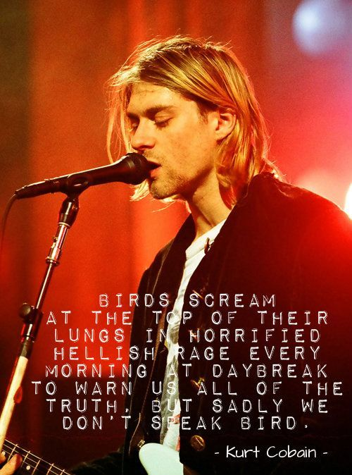 """Birds scream at the top of their lungs in horrified hellish rage every morning at daybreak to warn us all of the truth, but sadly we don't speak bird."" - Kurt Cobain"
