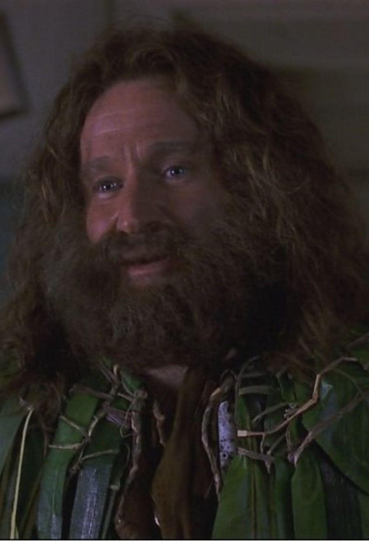 Robin Williams Jumanji 1995 Robin Williams Robin Williams Jumanji Best Classic Movies