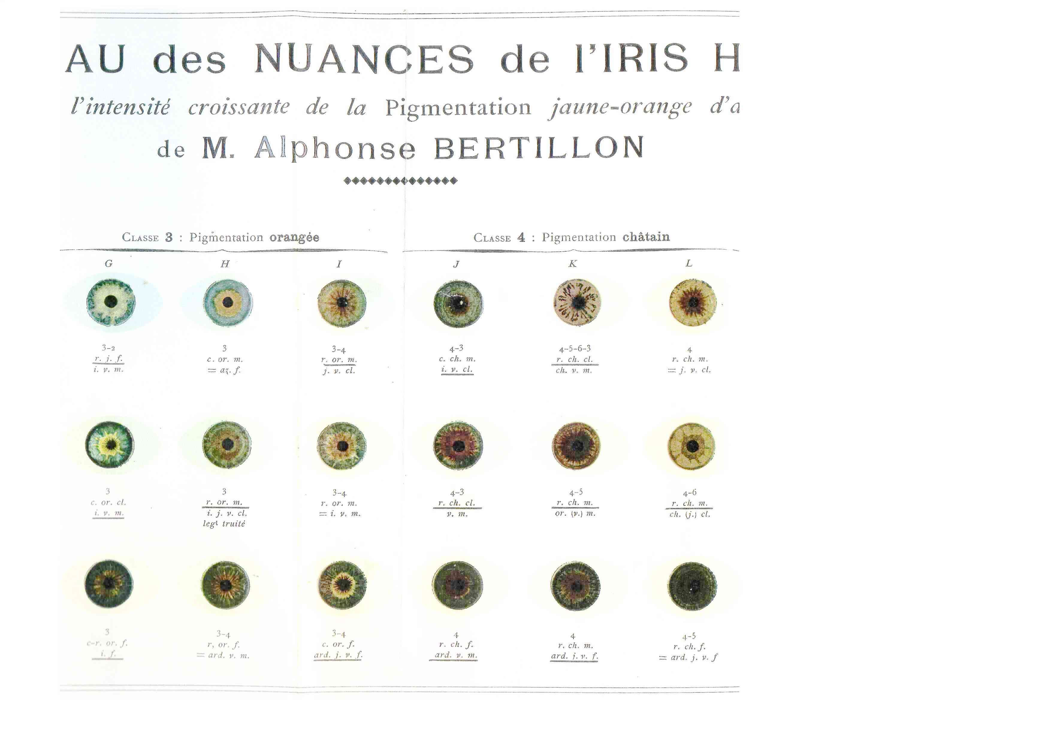 free printable eye iris anatomy eye instruments anthropometriques bertillon irises