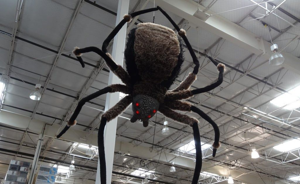 Image Result For Giant Spider Halloween Image Result For Giant Spider Halloween Image Result For G Halloween Spider Decorations Giant Spider Halloween Spider