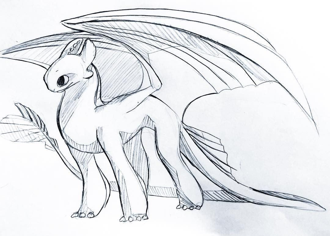 Pin By 25lexil Wheeler On Toothless Dragon Sketch Night Fury