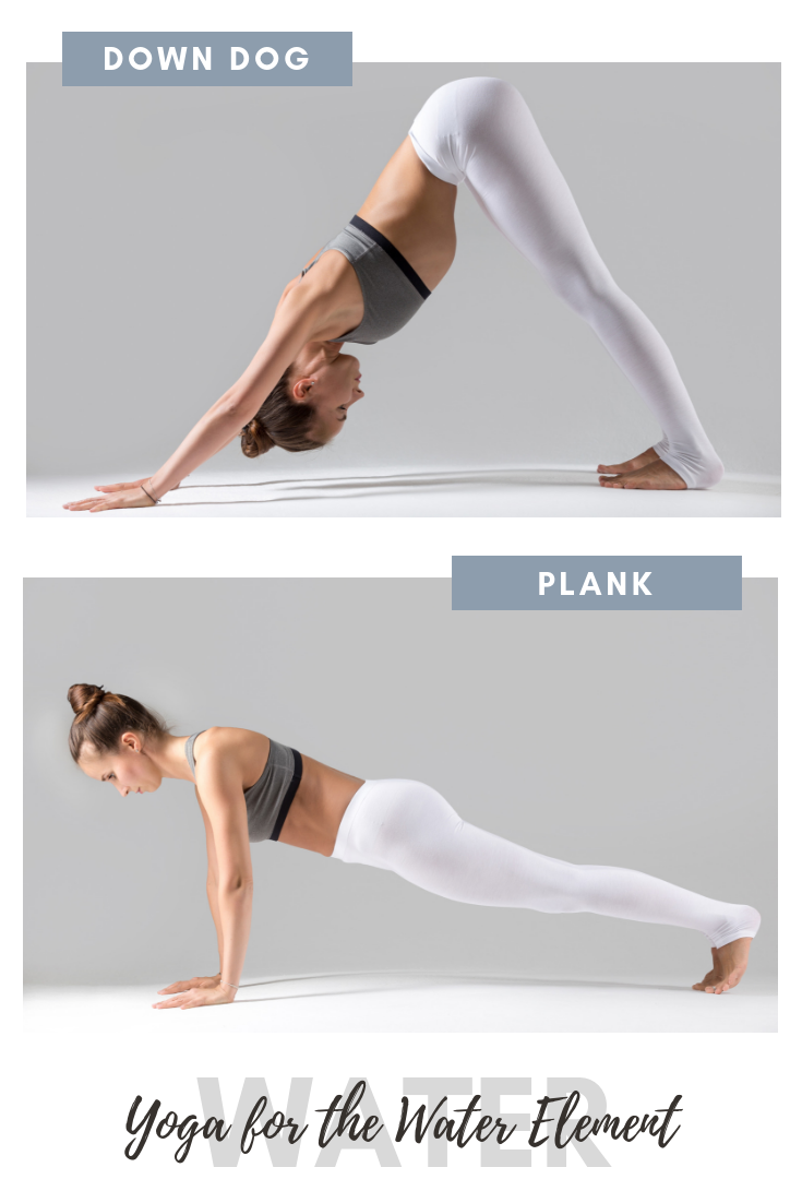 38+ Downward dog to plank trends