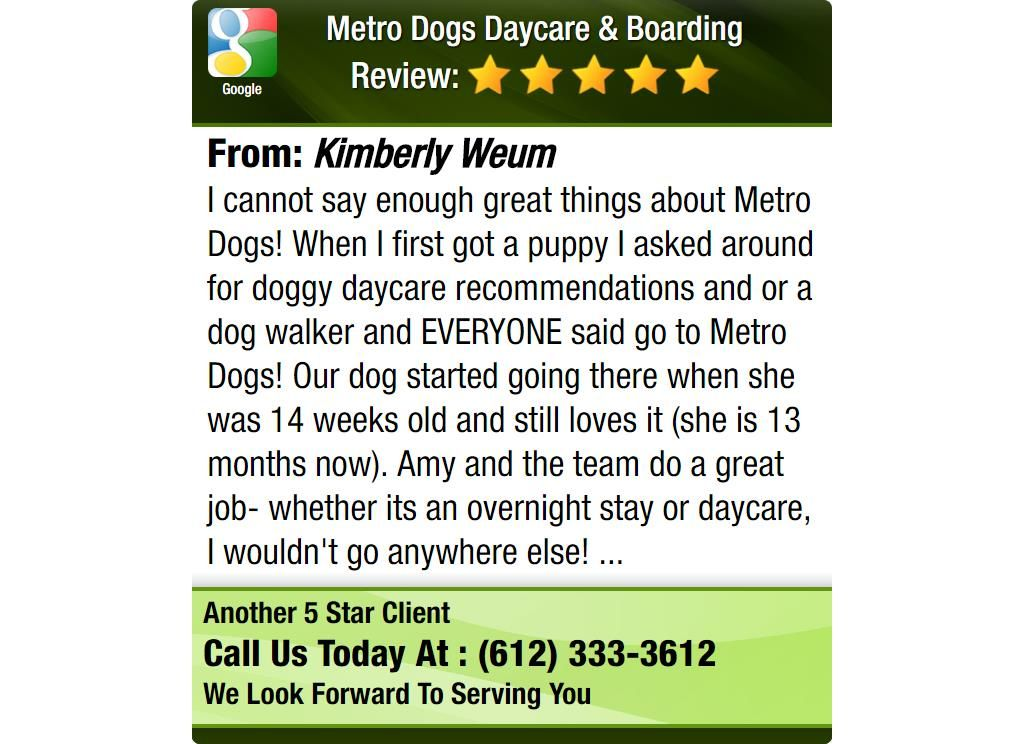 I cannot say enough great things about Metro Dogs! When I