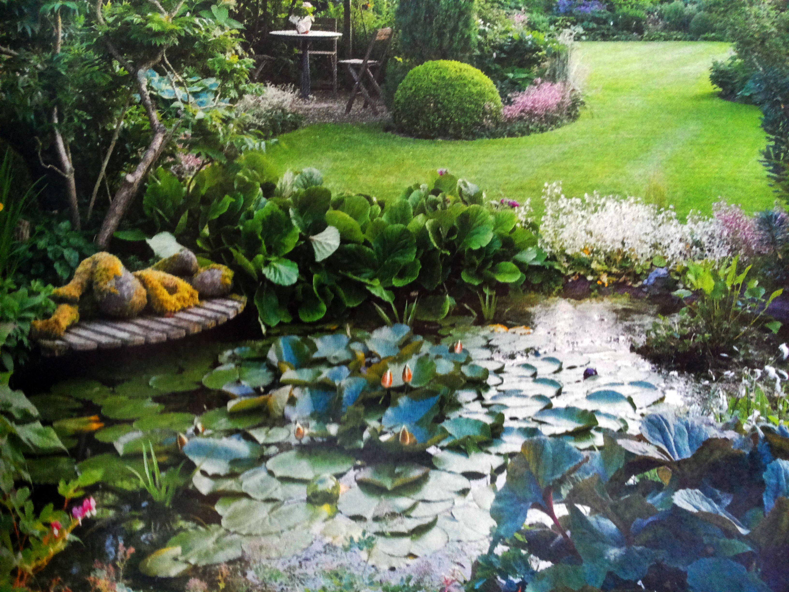 #Teich #Pond