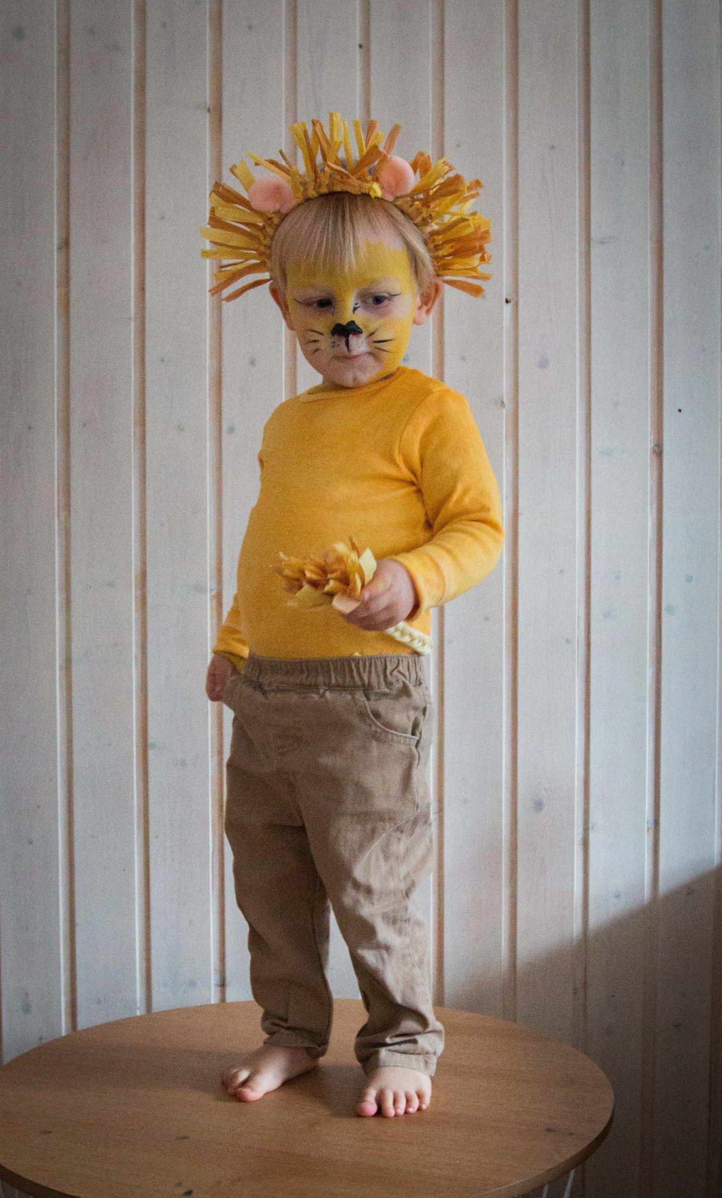 meine löwen ein last minute kostüm für kinder