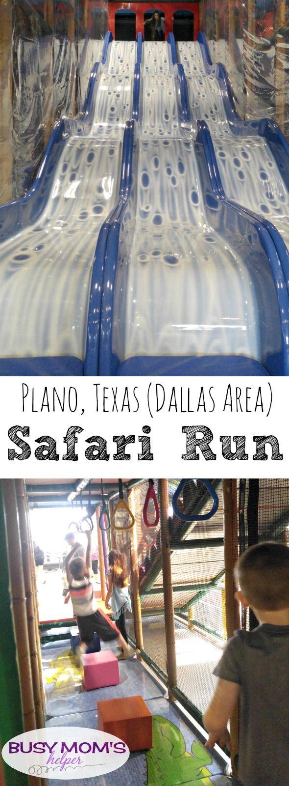 Safari Run Plano >> Fun Things To Do In Dallas Safari Run Dallas Things To Do