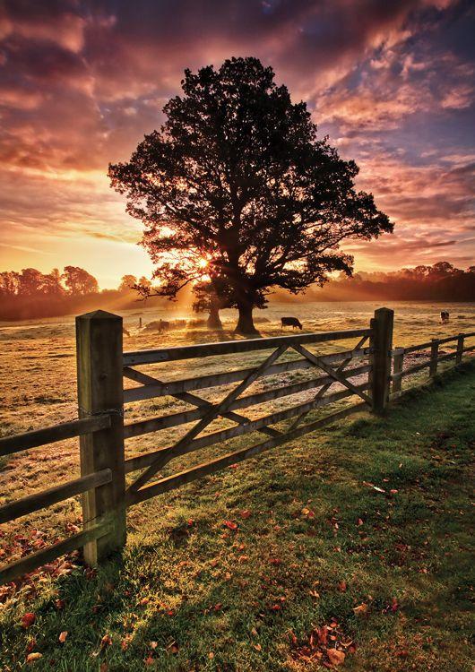 frosty autumn sunrise country