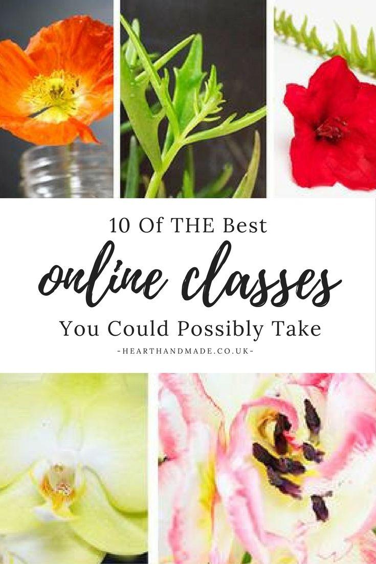 10 лучших творческих онлайн-классов, которые вам стоит посетить!