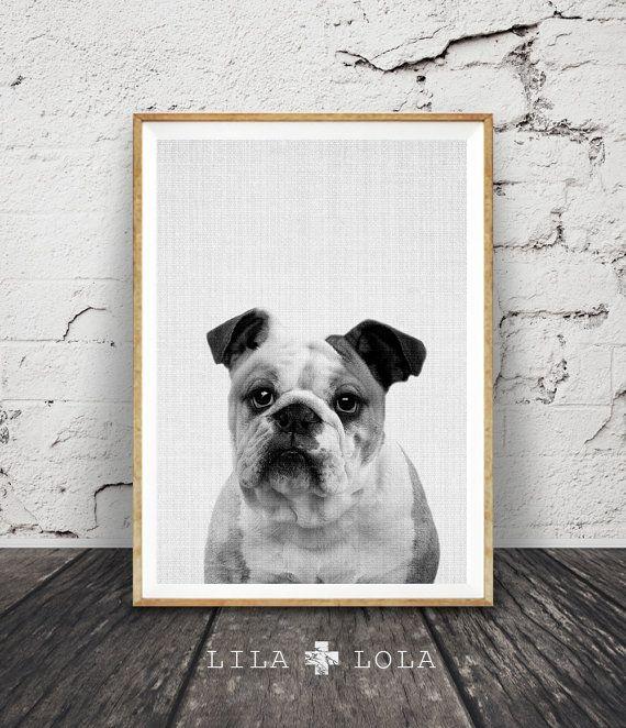English Bulldog Print Dog Wall Art Black And White Photo Etsy Arte Para Guardería Arte De Pared Producción Artística