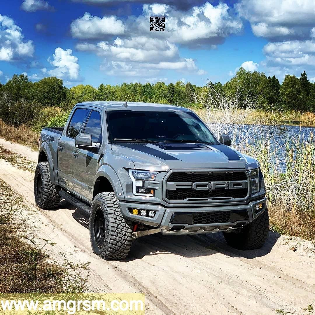 Ford Raptor in 2020 Ford trucks f150, Ford raptor, Ford