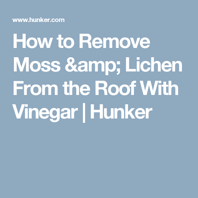 How To Remove Moss Lichen From The Roof With Vinegar Hunker Mold Remover Cleaning Mold Mildew Remover For Fabric