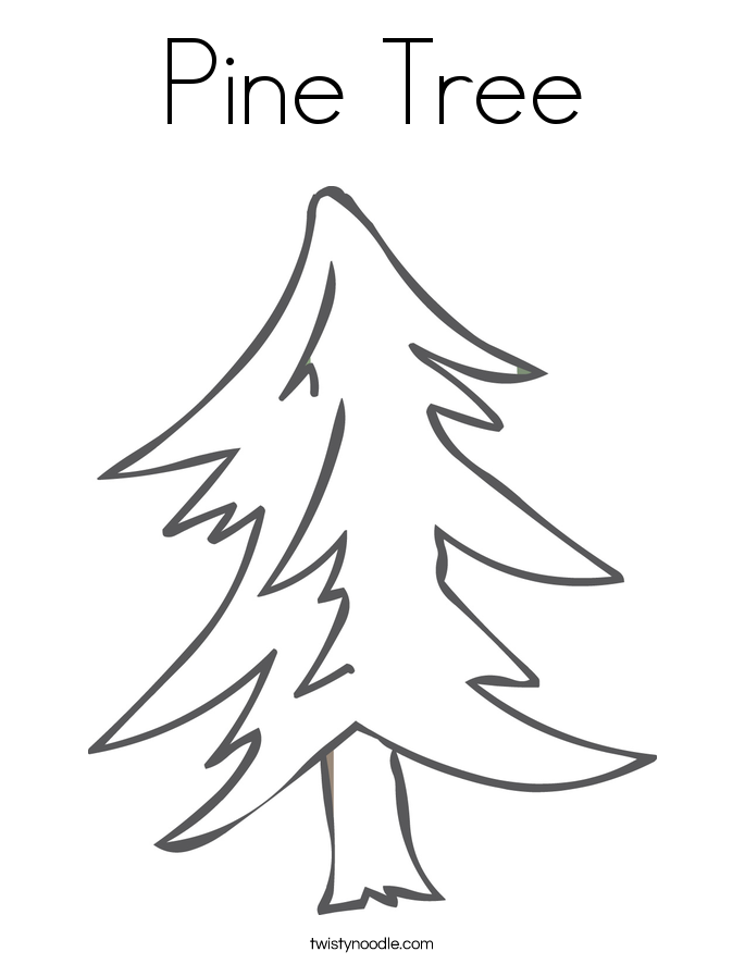 Pine Tree Coloring Page Png 685 886 Tree Coloring Page Coloring Pages Flag Coloring Pages