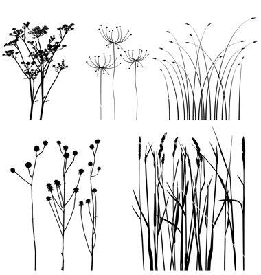 great grasses, esp. lower right corner