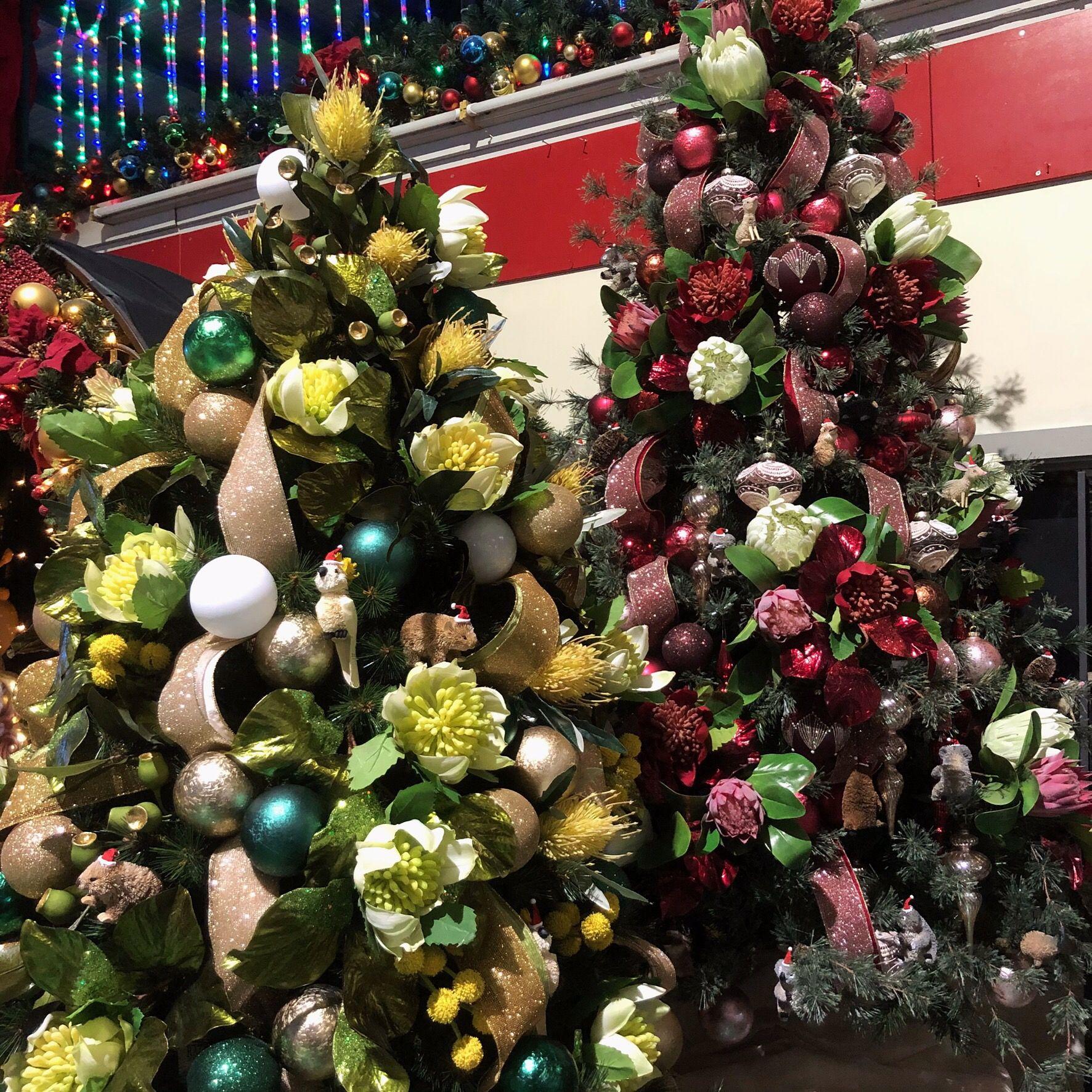 Australian Christmas trees