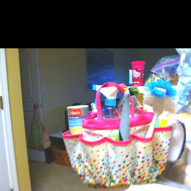 Use old shower caddy from college as a way to organize house hold ...