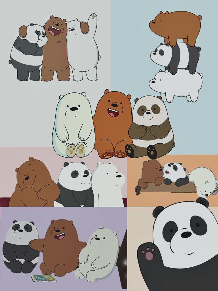 Panda Pardo Polar Escandalosos Fondodepantalla Wallpaper De Urso Ursos Fofos Wallpapers Bonitos
