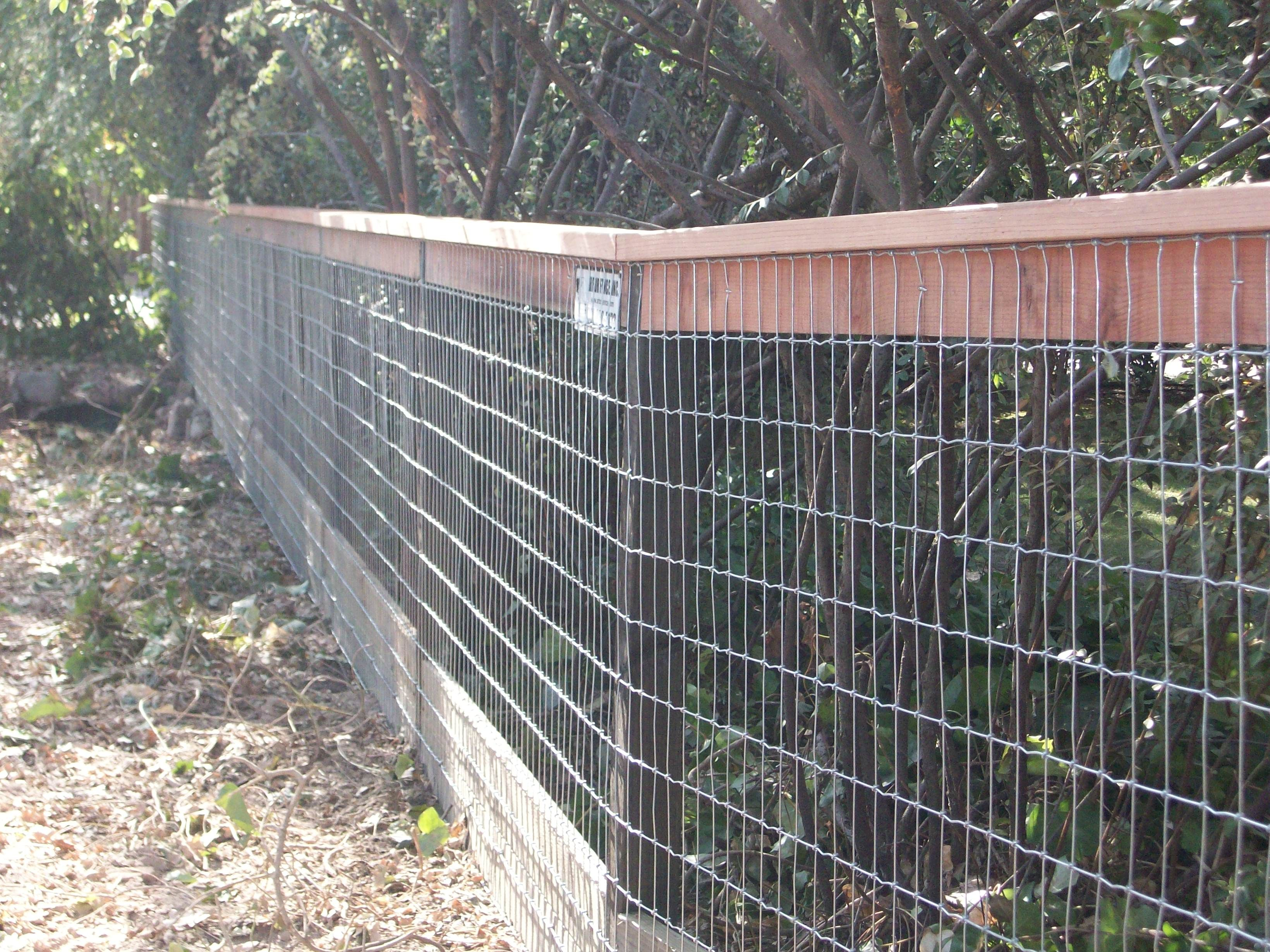 Adding A Top Cap To A Wire Fence Make A Great Statement