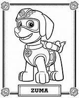 Skye From Paw Patrol Coloring Page