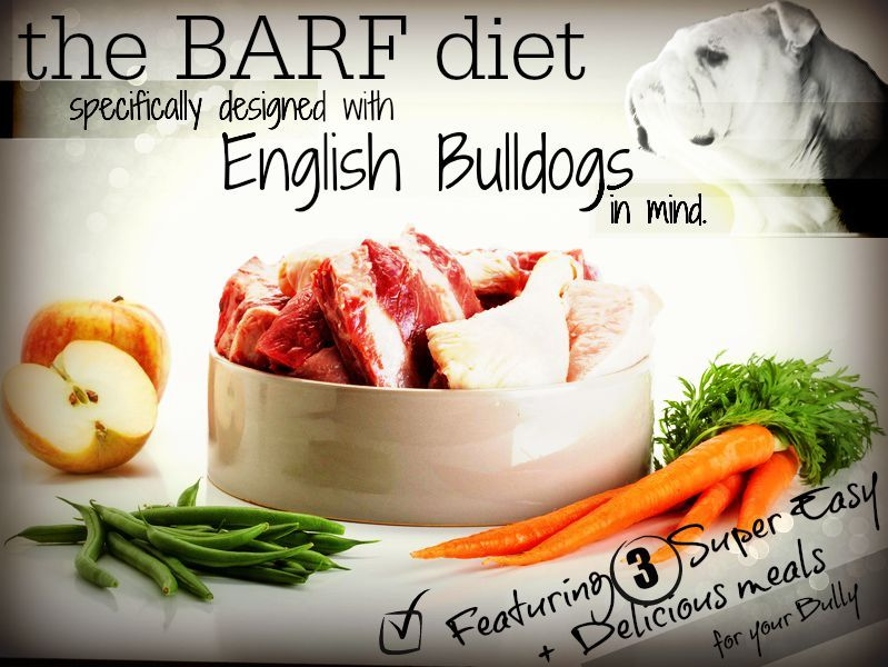 how to make a dog gain weight home remedies