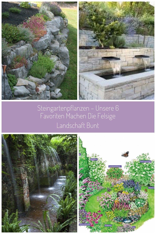 Steingarten Anlegen Welche Pflanzen Eignen Sich Am Besten Garten Brunnen Steingartenpflanzen Unsere 6 Favoriten Mache Steingarten Anlegen Steingarten Garten