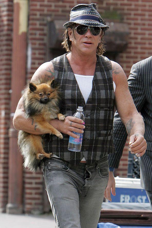 Mickey Rourke #Dog   Mickey rourke