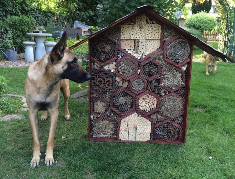 insektenhotel gro bauanleitung zum selber bauen bine s projekte pinterest holz gro und bau. Black Bedroom Furniture Sets. Home Design Ideas