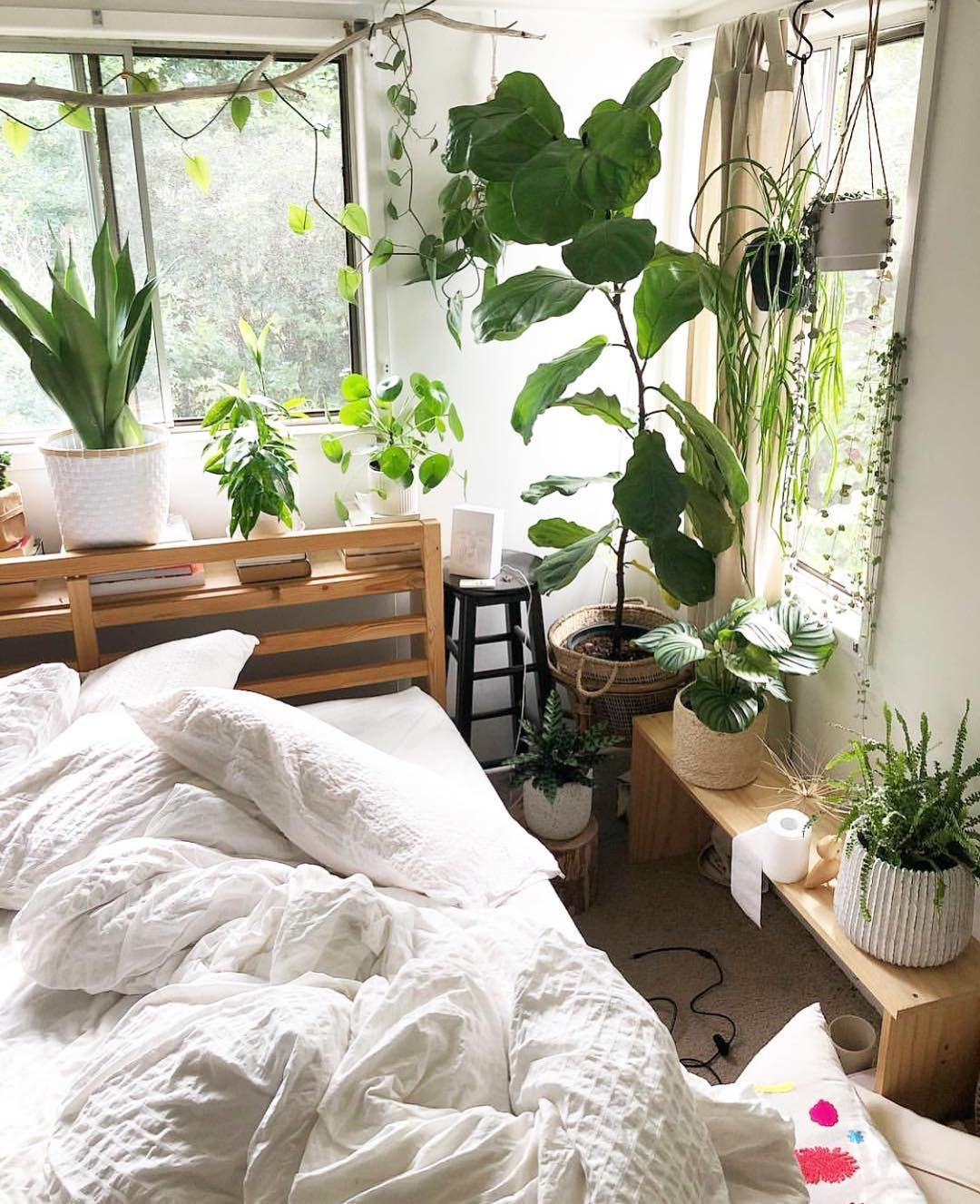 """The Potted Jungle on Instagram """"Gimme alllll the snuggles"""
