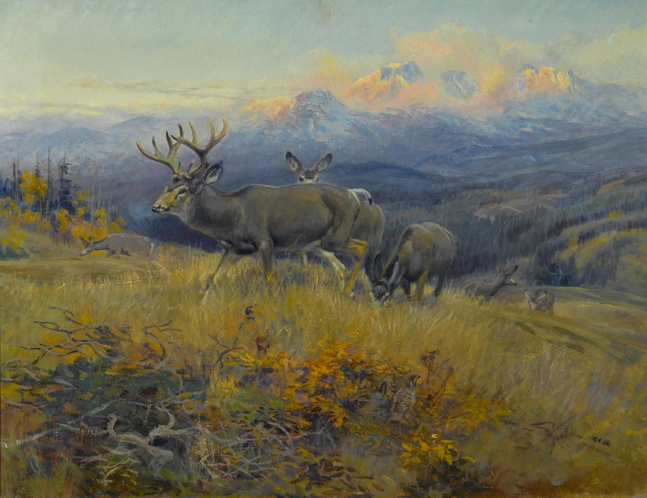 Native Amerian Art Deer Charles . Russell