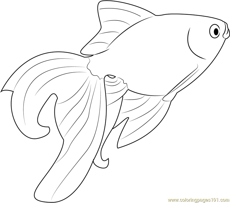 Beautiful Goldfish printable coloring page for kids and ...