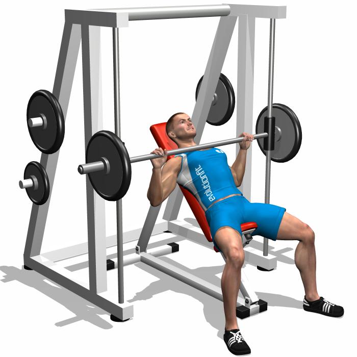 smith machine workout plan