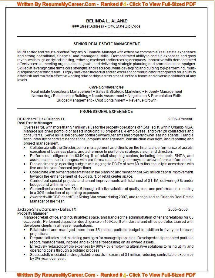 ProfessionalResume  Resume Cv Examples    Company