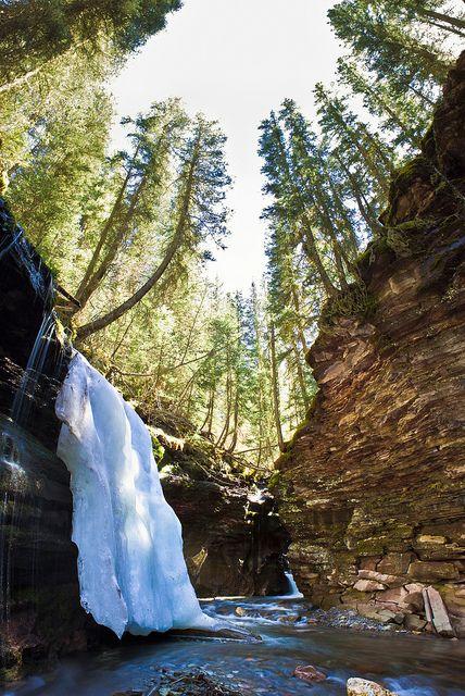 Bear Creek, Telluride, Colorado by Andy Gallen