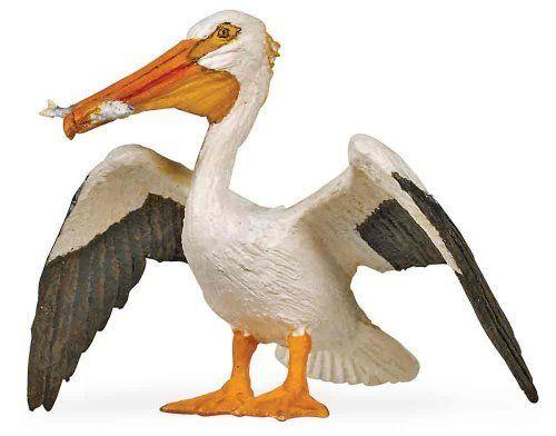 Safari White Pelican By Safari Ltd 5 13 3 L X 2 25 H 7 5 X 5 5 Cm Each Replica Comes With 5 Language Rain Water Collection White Pelican Storage Tanks