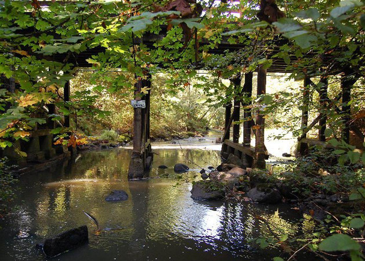 leach botanical gardens northwest pieces of heaven to enjoy