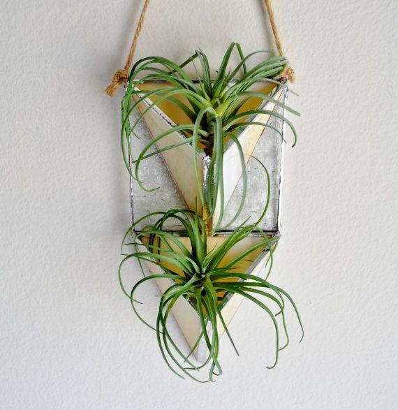 Vertical Garden Wall Plant Holder Terrarium Air By Jacquiesummer