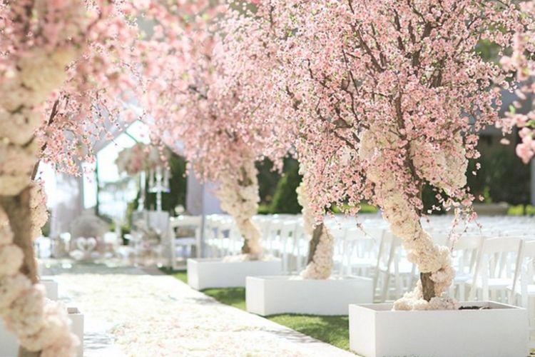 Rent Cherry Blossom Trees For Wedding Google Search Cherry Blossom Wedding Wedding Wedding Decorations