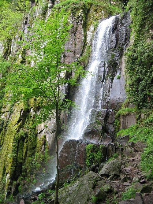 Cascade Du Nideck Oberhaslach Alsace Tourisme Randonnee Alsace Alsace Vosges