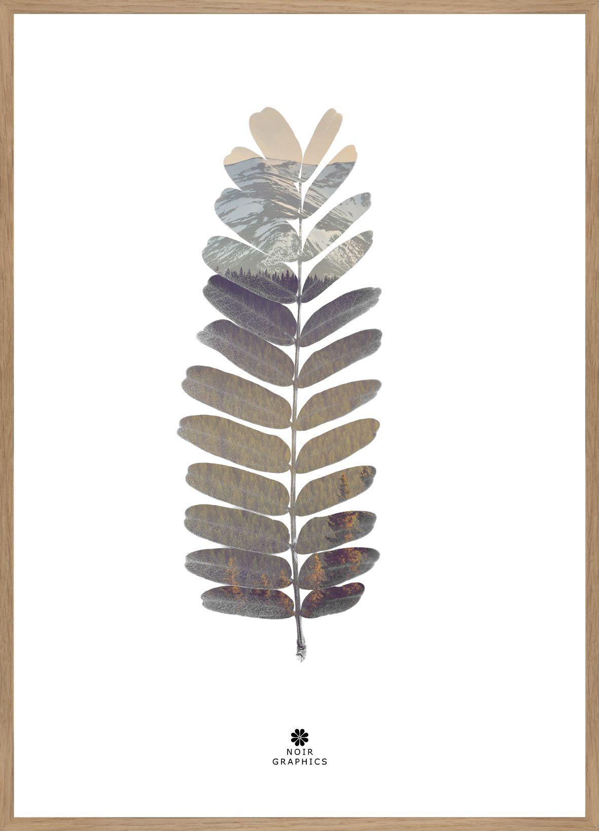FINE ART POSTER - TAMARIND LEAF, 50 x 70 cm   Pinterest ...