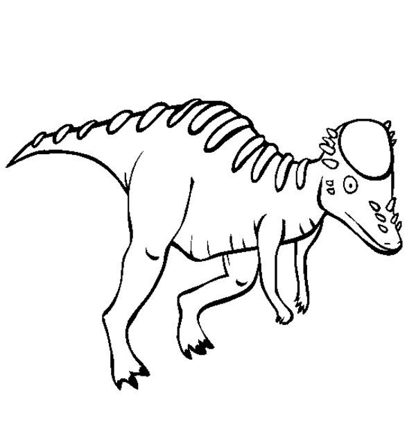 Pachycephalosaurus Coloring Page Proyectos Peces